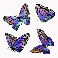 A collection of illustrations of watercolor butterflies with a black outline.