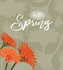 Hello Spring background with orange daisies. EPS10 vector illustration.