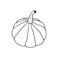 Linear cartoon hand drawn pumpkin. Cute vector black and white doodle pumpkin. Isolated monochrome pumpkin silhouette on white background.
