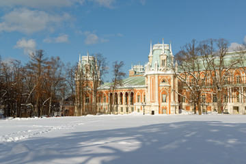 """The palace complex """"Tsaritsino"""", winter. Russia Moscow."""
