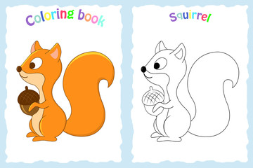 Coloring book page for preschool children with colorful squirrel
