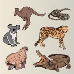 6 Realistic Animals