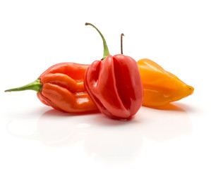 Three Habanero chili yellow orange red hot peppers isolated on white background.