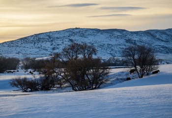 Wyoming Winter Evening 1X