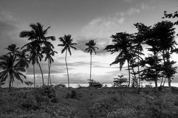 Dominican Republic Samana Peninsula