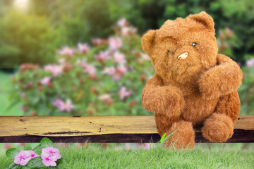 Brown Teddy Bear sitting in a lonely garden.