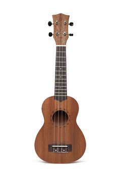 The brown ukulele guitar