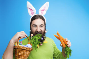 Happy Easter concept. Nice kind muscle man male with beard, white ears of rabbit and basket with colorful easter eggs and green in green t-shirt bites green isolated on blue background