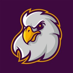 eagle mascot logo for sport team