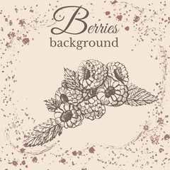 Hand drawn sketch with raspberries on sepia vintage background. Vector illustration