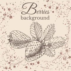 Hand drawn sketch with strawberry on sepia vintage background. Vector illustration