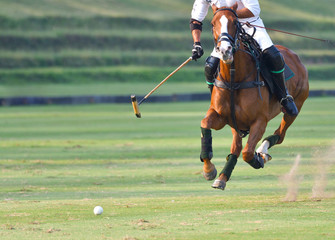 The polo player is riding on a horse