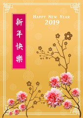 """Happy chinese new year 2019, year of the pig, Chinese characters """" xin nian kuai le """" mean Happy New Year"""