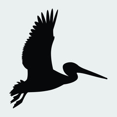Pelican in Flight Silhouette