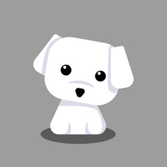 Cute Maltese White Puppy Cartoon Vector, for design, banner, logo