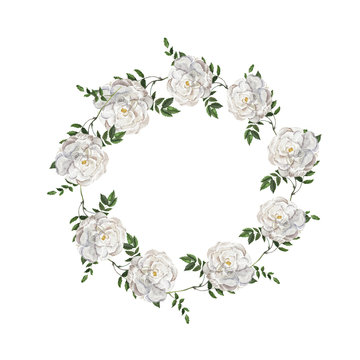 White wild roses frame with green leaves isolated on white background. Design for logo, wedding inviation, greeting card. Hand drawn watercolor illustration.