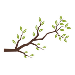 Tree branch isolated icon vector illustration graphic design