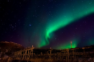 Northern Light, Aurora Borealis, Norway, Lofoten, vesteralen
