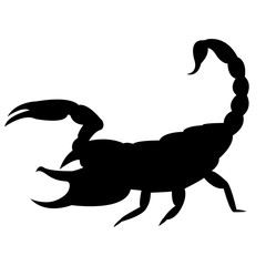 Vector image of a silhouette of a scorpion on a white background.