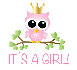 it´s a girl newborn baby or baby shower