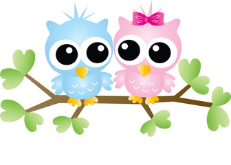 two sweet little owls sitting on a branch