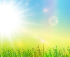 Sunny green background, spring natural vector background.