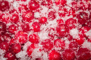 Cold frozen red berry cranberries on the table