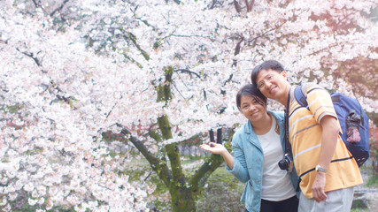Young Asian loving Couple lover traveler sightseeing sakura or cherry blossom in blossom spring garden, Love & tenderness, Romantic dating, Happy couple in love honeymoon in japan