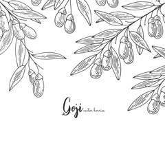 Detailed frame with goji berries. Hand drawn elements for invitations, greeting cards, wrapping paper, cosmetics packaging, labels, tags, posters etc.