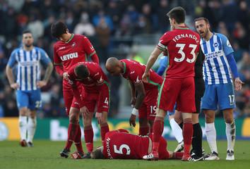 Premier League - Brighton & Hove Albion vs Swansea City