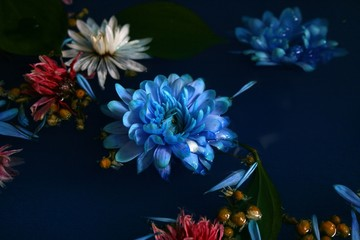 Floral background. Selective focus. Nature concept.
