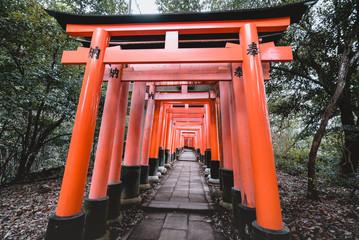 Fushimi Inari Shrine, shrine, Torii Wall mural