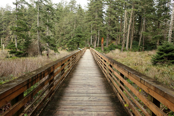 Wooden bridge in a park in Long Beach, WA.