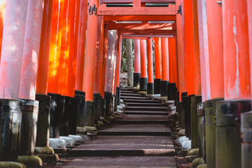 Fushimi Inari Shrine, shrine, Torii