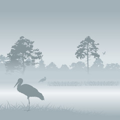 Vector landscape with storks