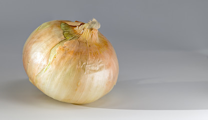 Ripe onion and shadow on a whtie surface
