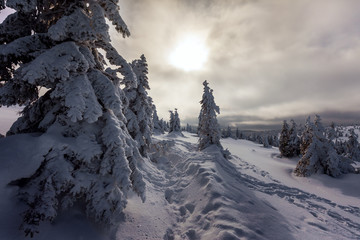 Winter wonderland in the Alps in winter.