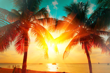 Photo sur Plexiglas Plage Sunset beach with tropical palm tree over beautiful sky. Palms and beautiful sky background. Tourism, vacation concept backdrop. Palms silhouettes over orange sun