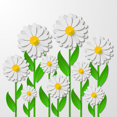 Bright spring floral background with 3d cut out paper chamomiles isolated on white. Vector illustration