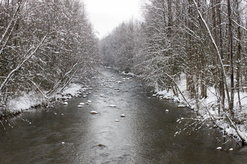 River and Pond in Winter Through the Forest