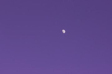 The Moon On The Purple Cloudless Sky
