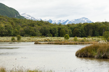 Marshland in Tierra del Fuego with the Andes Mountains in the background .