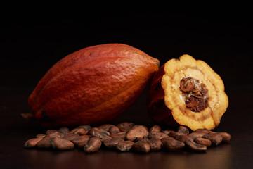 Cocoa natural fruit pod