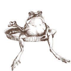 the toad sits on a big flat Lily pad, sketch vector graphics monochrome drawing