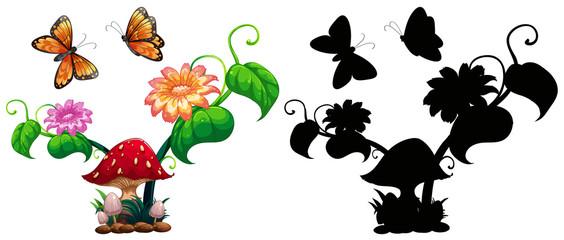 Butterflies and mushroom in garden