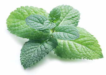Perfect spearmint or mint isolated on white background.