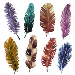 Hand painted watercolor feathers set