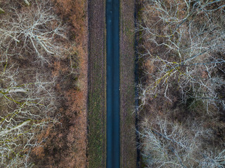 Aerial view of straight road in Amboise forest, France. Winter season.
