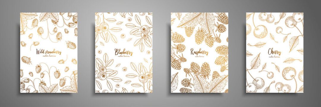 Gold collection of cards design with berries. Vintage gold frame with ripe berries illustrations - raspberry, cherry, blueberry, wild strawberry. Great design for natural and organic products.