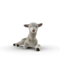 Lamb lies on the floor, isolated on a white. 3D illustration